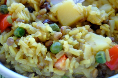 Homemade Indian rice, lentils and vegetables close-up