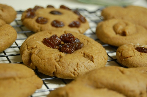 homemade gingerbread cookies with raisins